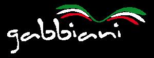 Logo Gabbiani